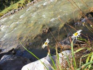 Hervorragendes Wasser aus den Tiefen der Berge - Auf den Spuren der Enns am Ennsradweg von Flachauwinkl nach Radstadt blogHuette.at image 1