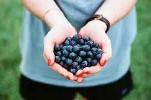 Schwarzbeeren vom Gerzkopf: Blau, blauer, meine Lippen – Da weiß jeder gleich was ich gegessen habe blogHuette.at image 4
