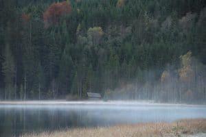 Jägersee mit Nebelschleier