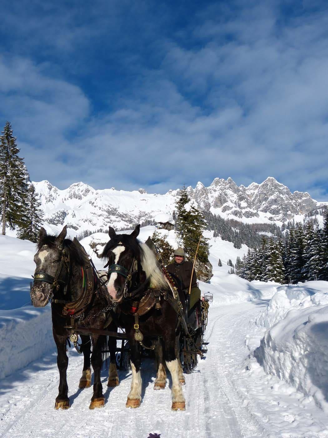 Pferdekutschenfahrt zu den Hofalmen in Filzmoos