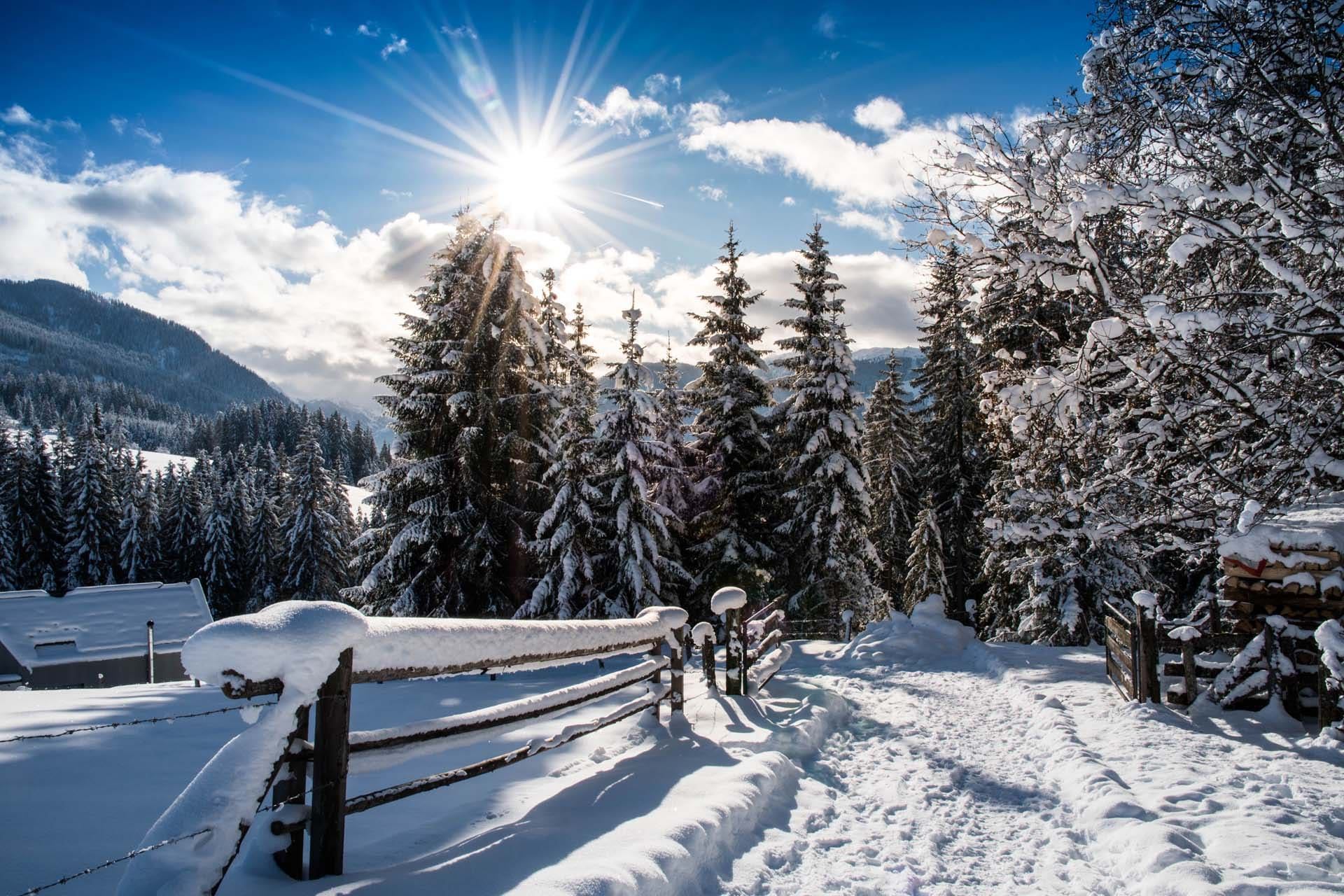 Winterwandern beim Winterbauern