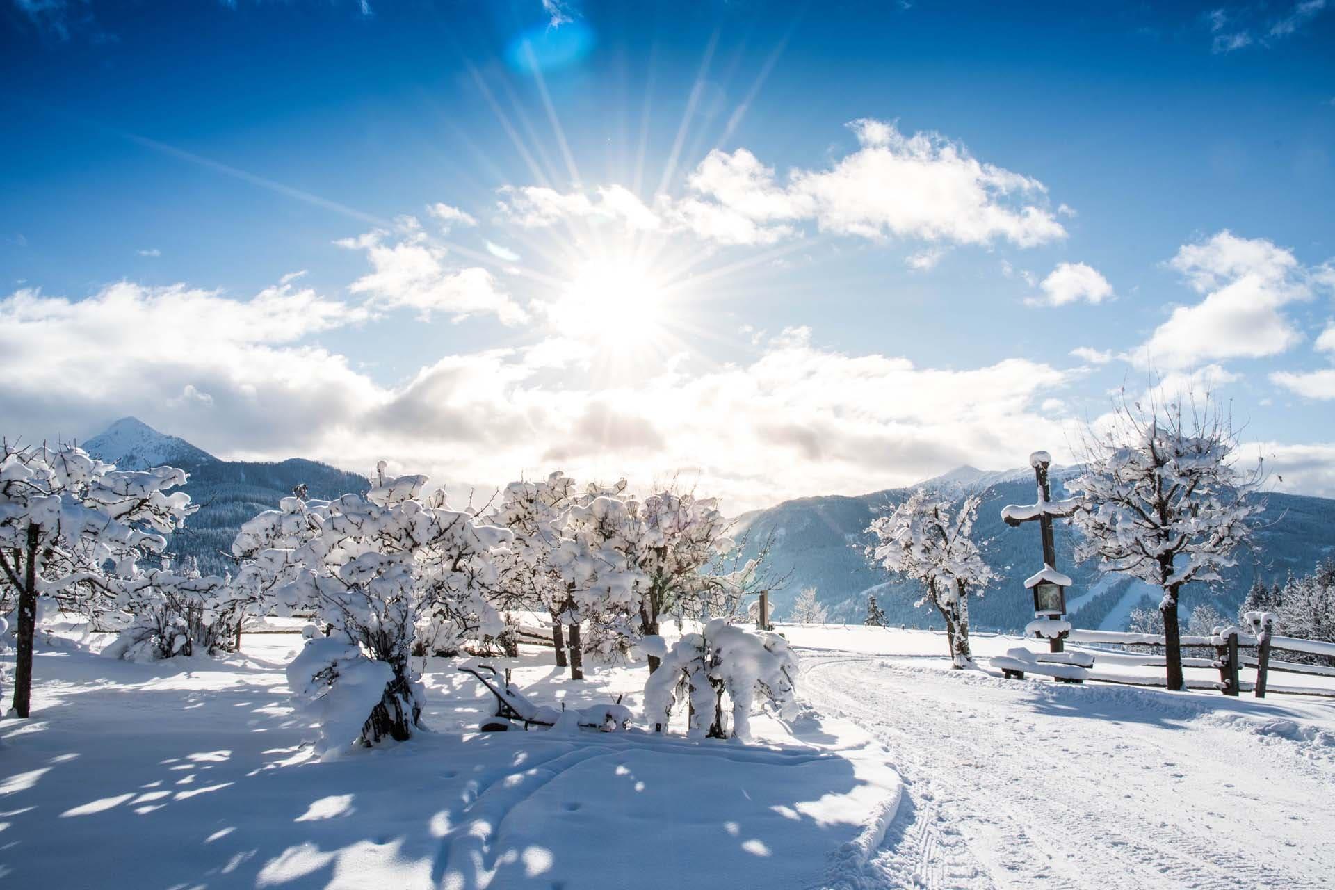 Winterbauer in Flachau