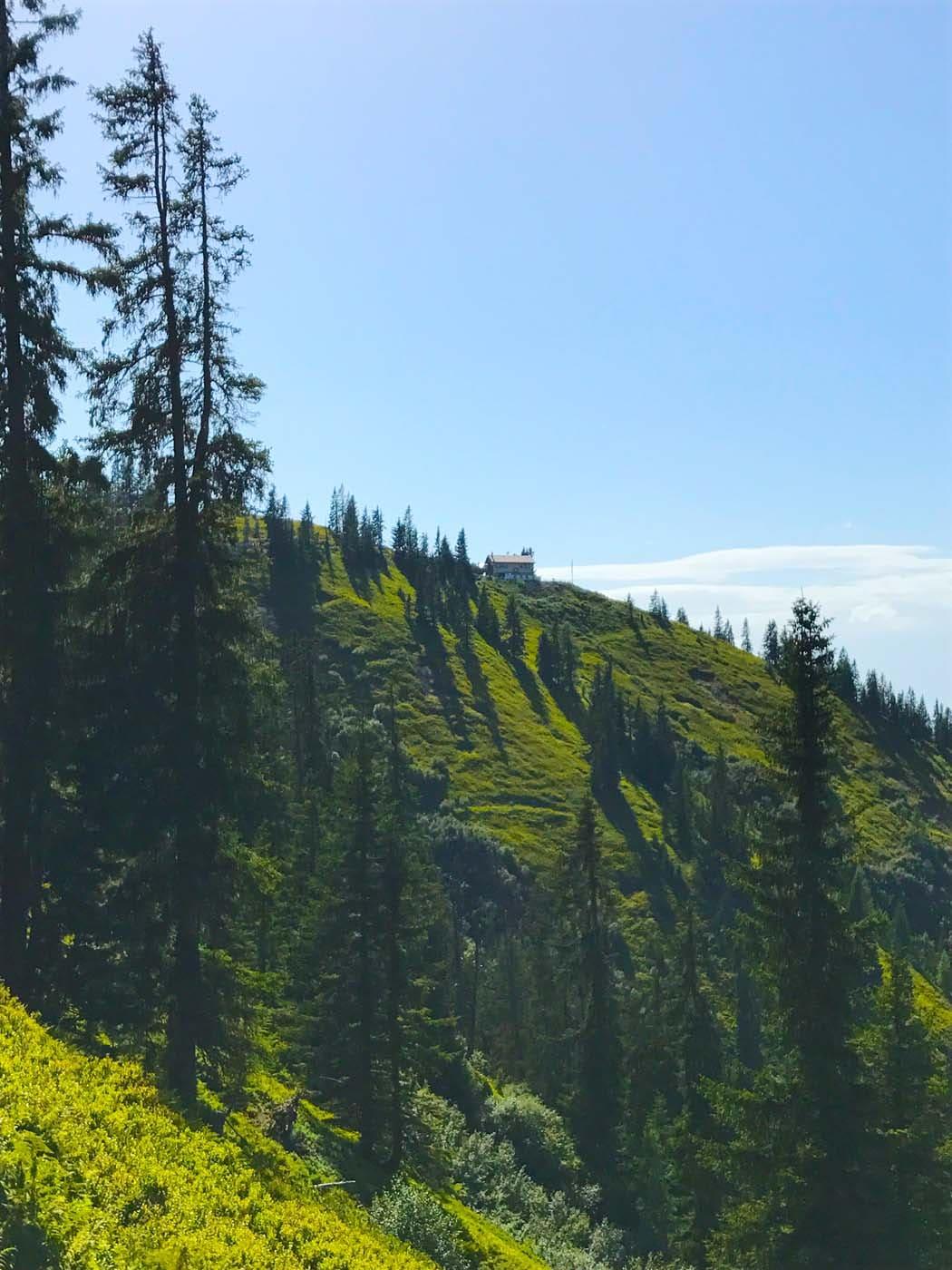 Hiking in the Salzburger Sportwelt