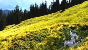 2. Etappe der 7 schönsten Gipfel der Salzburger Sportwelt