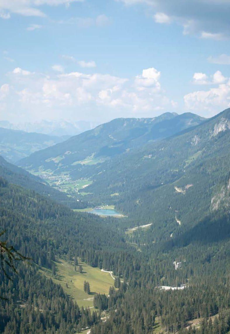 Blick_von_oben(c)Stefan_Altendorfer