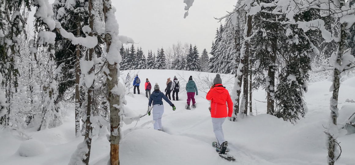 Schneeschuhwandern am Reiteck