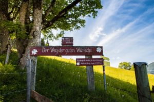 Naturerleben in Flachau