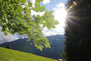 Naturwanderung im Salzburger Land
