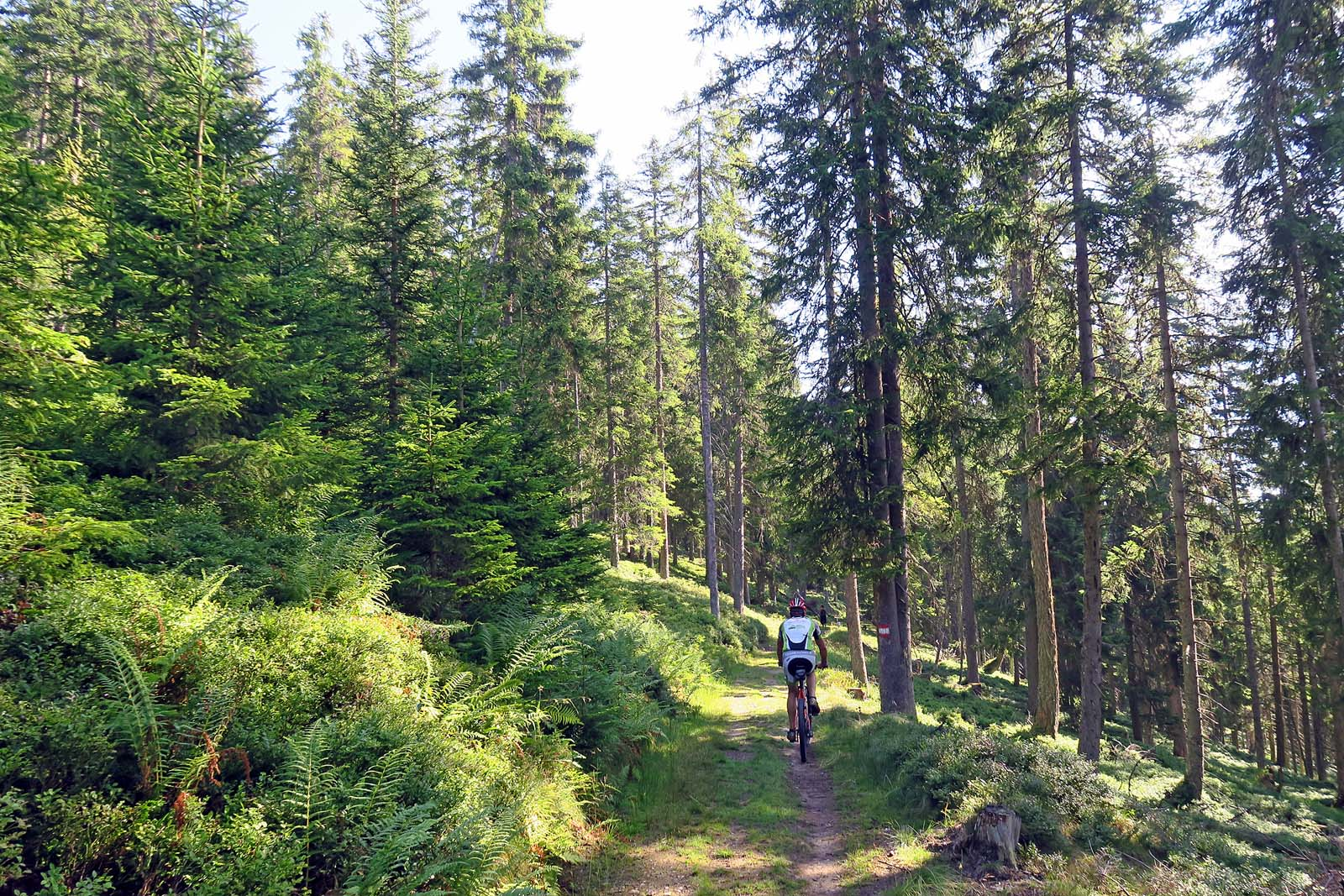 MTB tour austrian alps