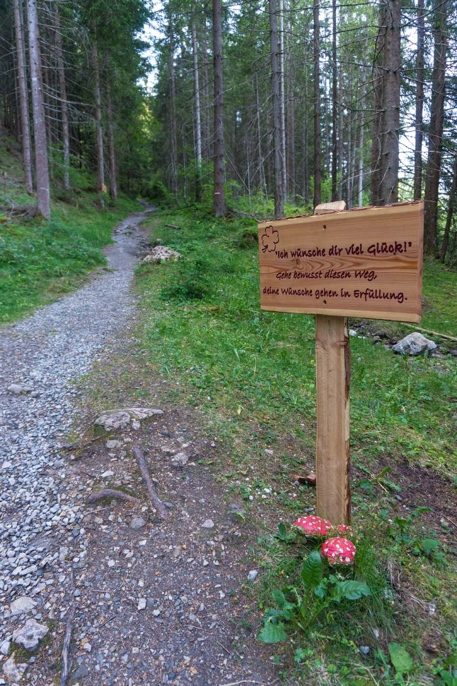 Themenwanderweg Flachau