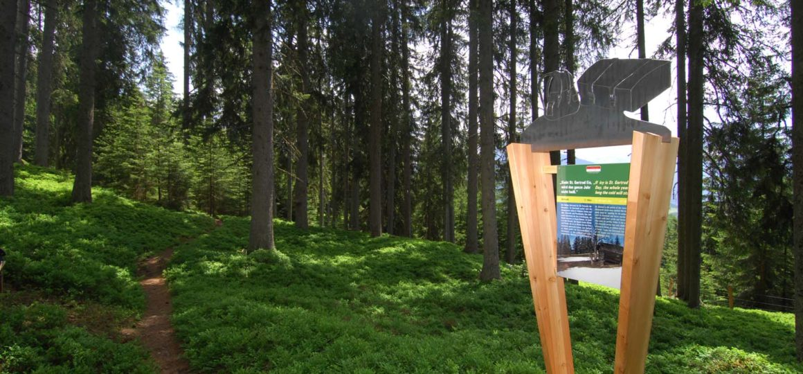 the path of country sayings for a walk through the forest in Salzburg