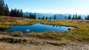 Wandern in Flachau, Wanderung Südwienerhütte
