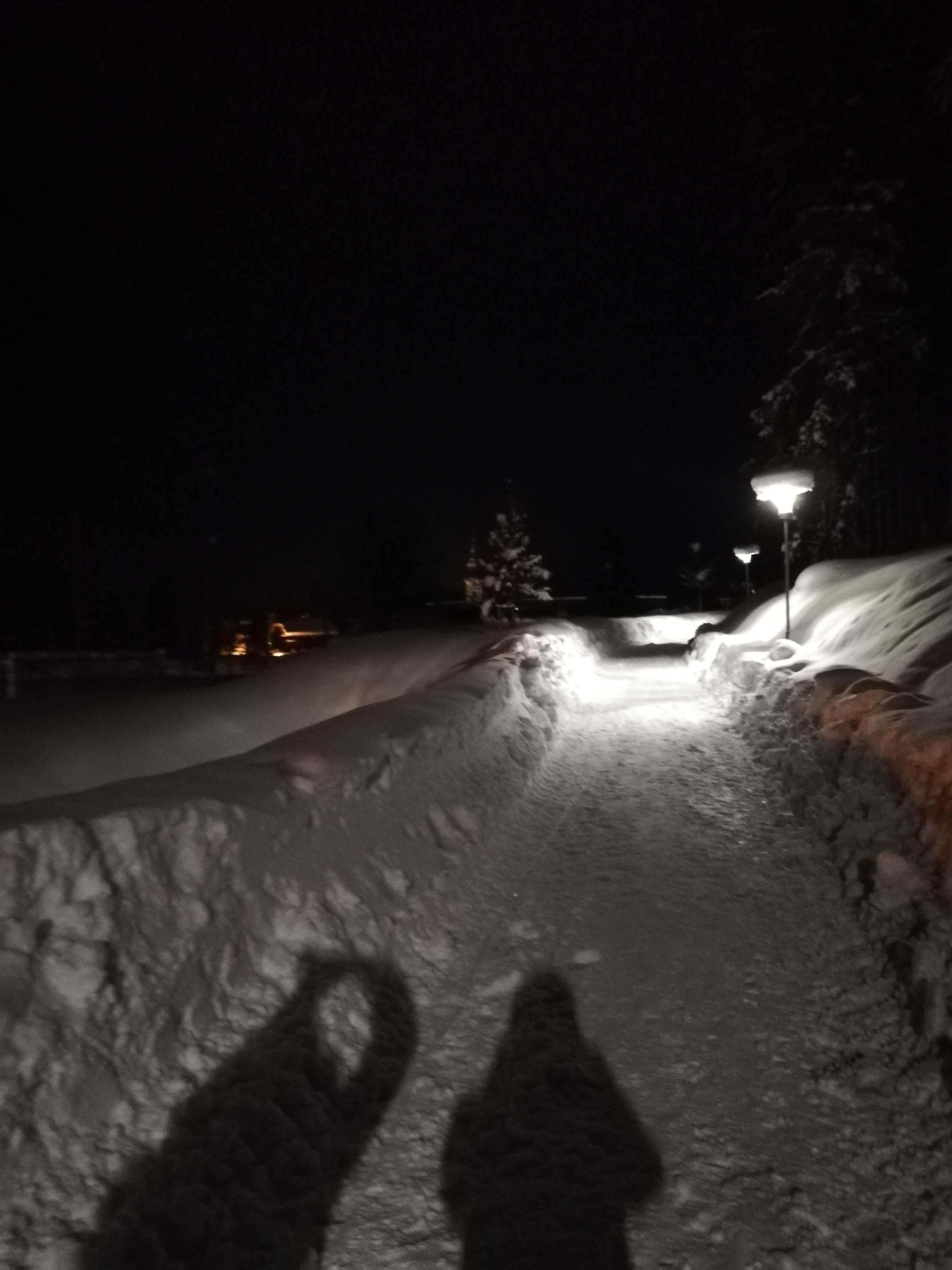 night Sledging in Flachau