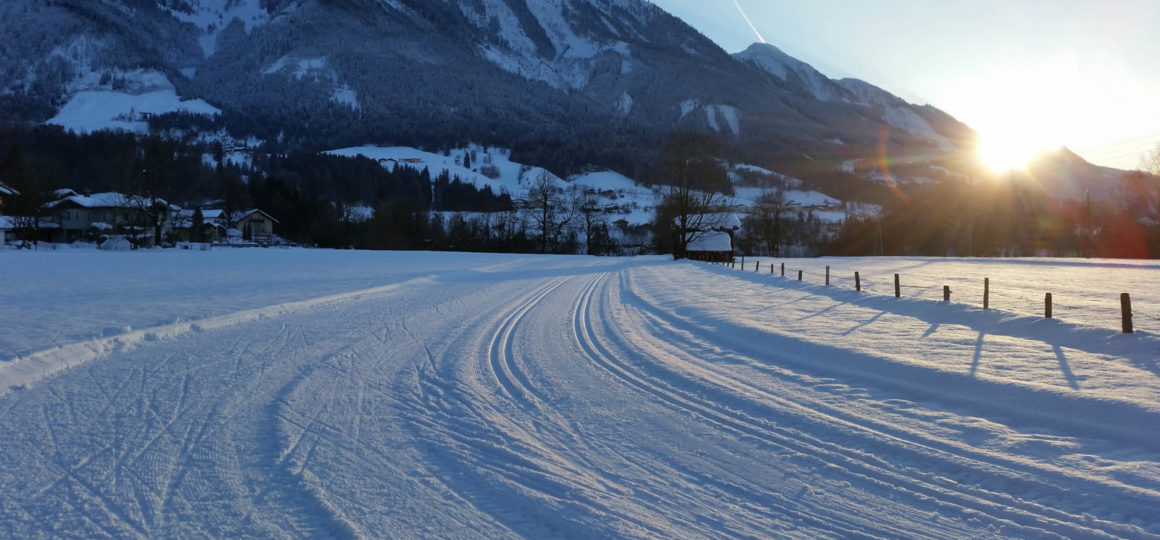 Outdoor sports in winter, cross-country skiing