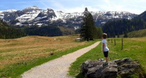 Wandern mit Kindern, Kinderwagentauglicher Wanderweg