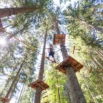 Climbing garden, high ropes course,