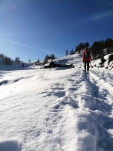Winterwanderung zu den Lackenalmen in Altenmarkt/Flachau