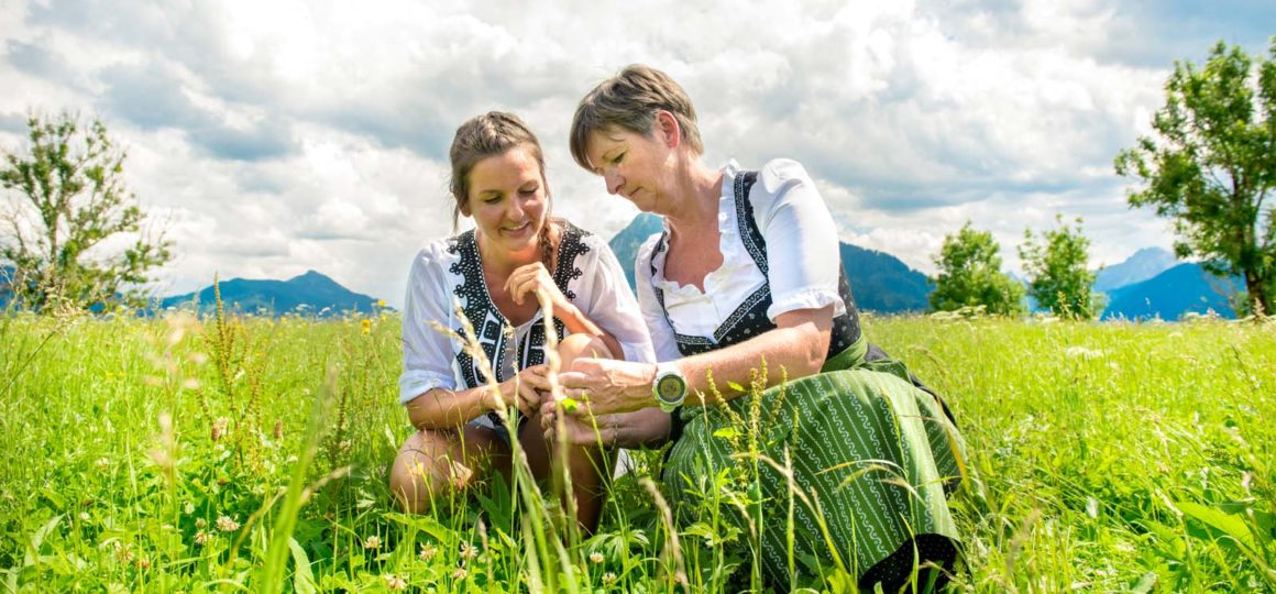 Kräuterkunde in Salzburg, Kräuterkunde