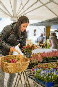 Blumen kaufen am Radstädter Wochenmarkt