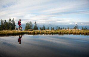 Die Berge der Salzburger Sportwelt mit Hund erleben