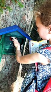 Perfektes Ausflugsziel für die ganze Familie - eine Wanderung in Filzmoos