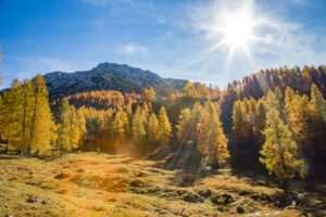 Perfekte Herbstwanderung im Bergdorf in Filzmoos