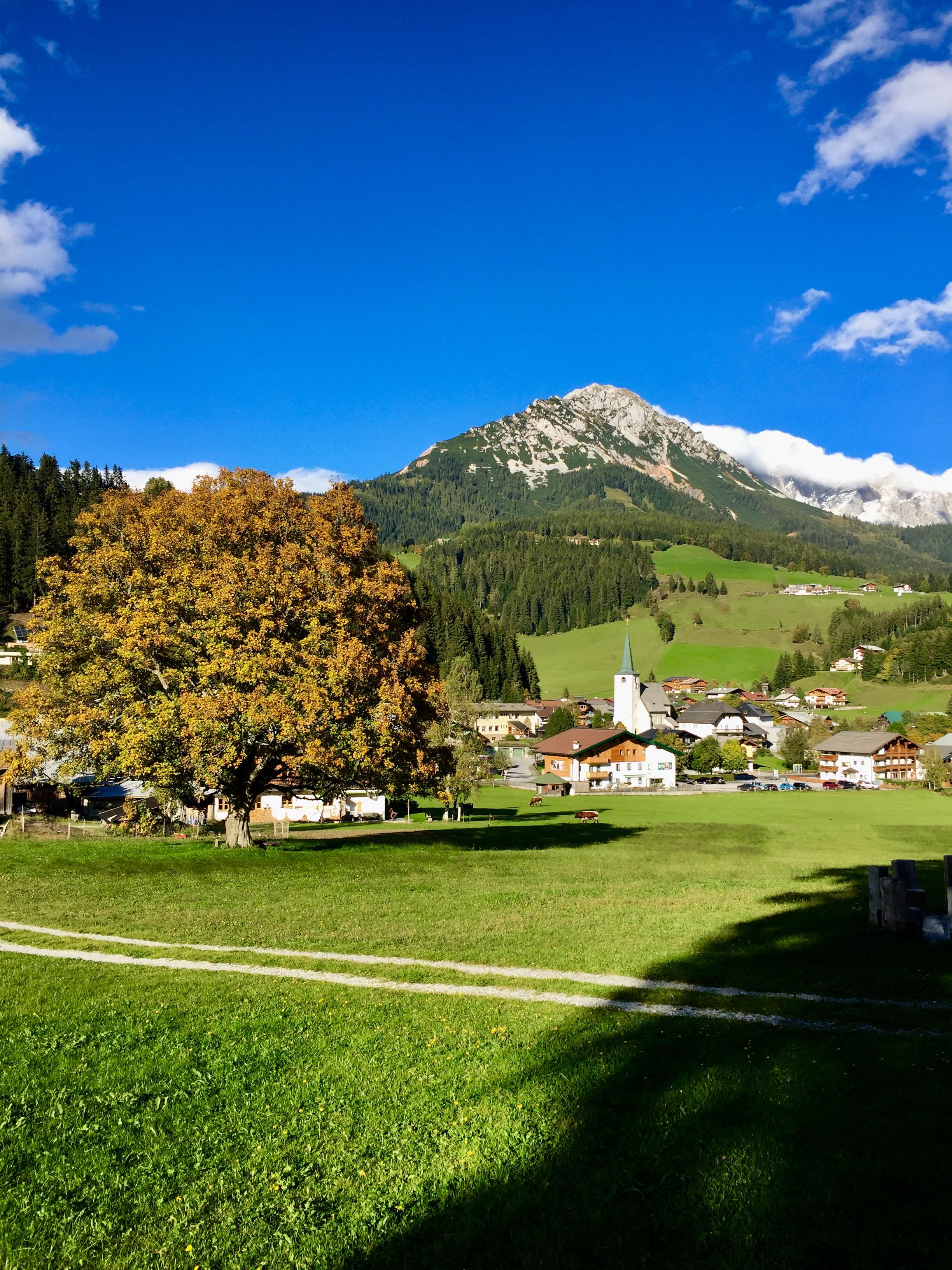 Perfekte Herbstlandschaft in Filzmoos