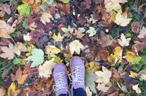 Spaziergang in der Natur im Herbst