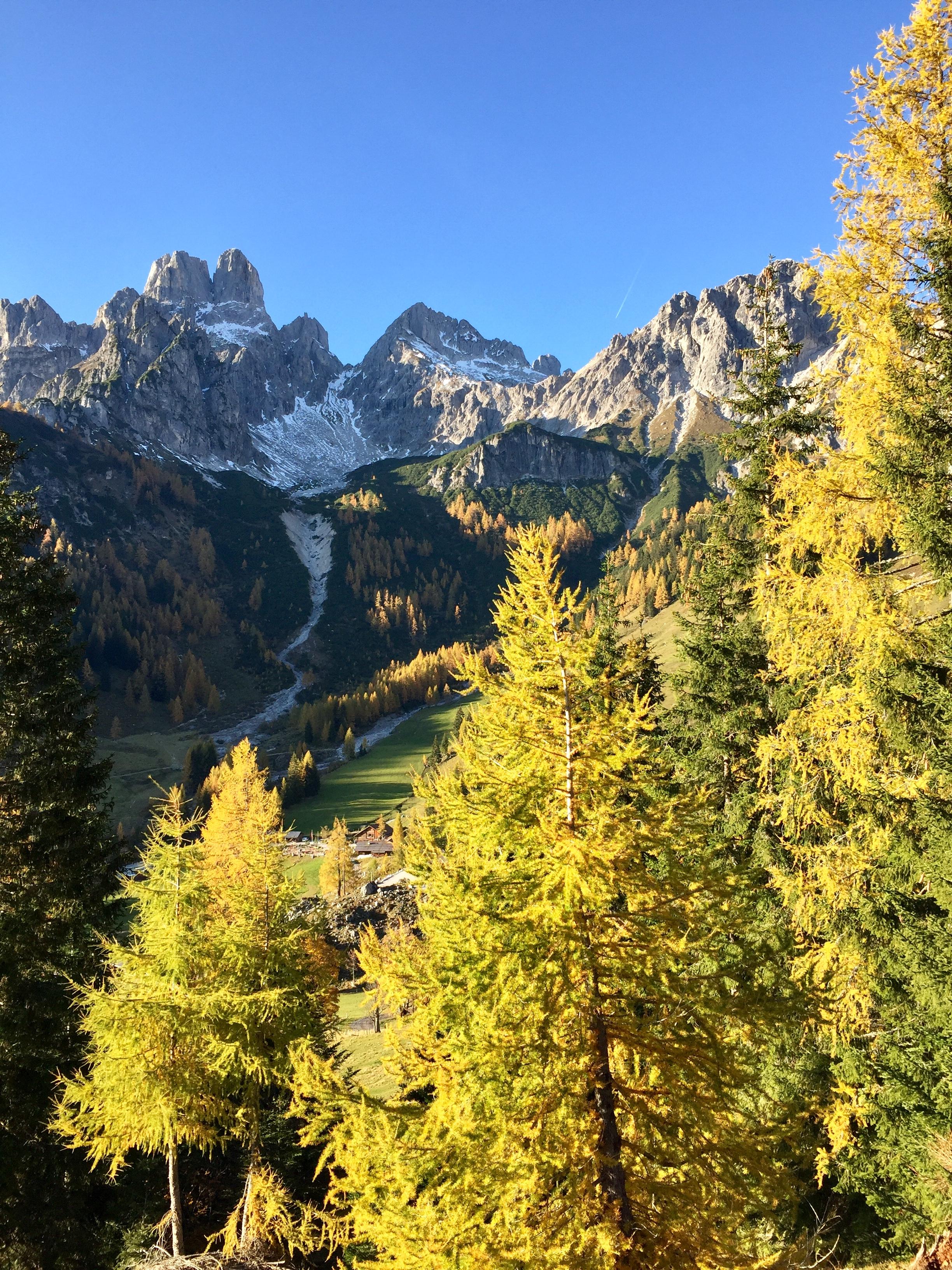 Wunderschöner goldener Herbst im Bergdorf Filzmoos