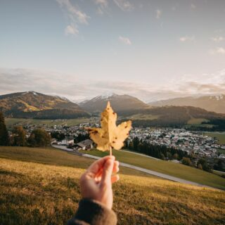 """Autumn is a second spring when every leaf is a flower."" #truewords -Albert Camus- What are your plans for this week? 😊🍁🍂  #bloghuette #salzburgersportwelt #hiking #autumnlove #butsoonwinter #alsolookingforward #itsgettingcolder #perfect #outdoor #nature #fall #autumn #momentslikethis #unforgettable #explorenature #feelnature #enjoynature #holidaymountainsandyou  📸 (c) Christian Schartner / Altenmarkt-Zauchensee"